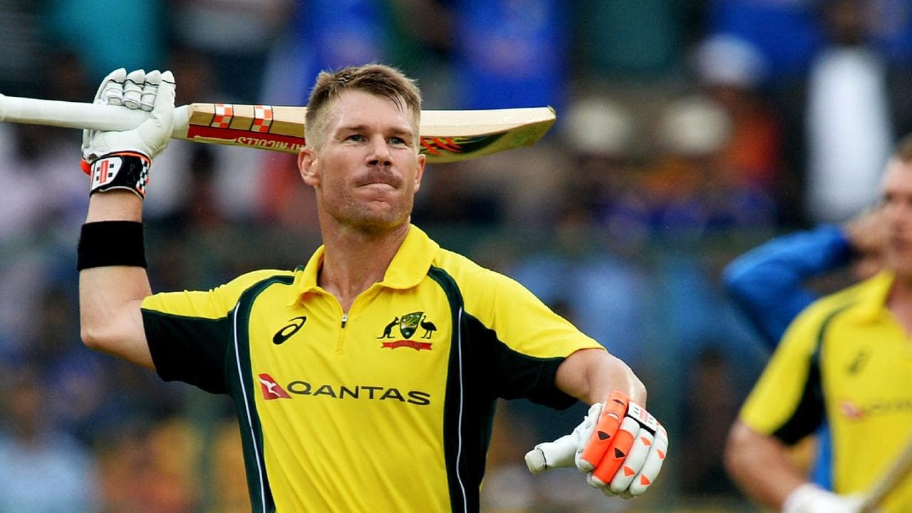 David Warner responds to fan who asked him to quit the Cricket and suggested another profession