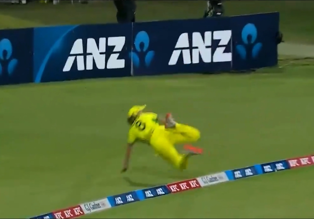 WATCH: Ellyse Perry stops six with a blinder against New Zealand